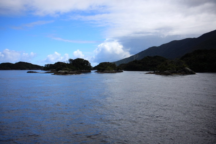 A View of Doubtful Sound